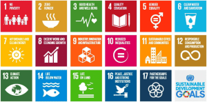 UN Sustainable Development Goals set objectives for social justice and environmental management around the world.